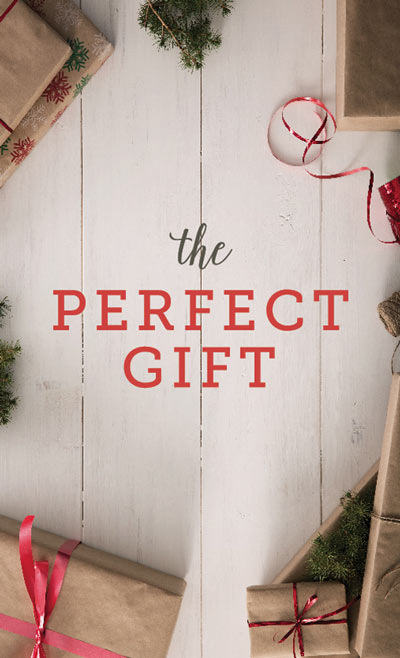 The Perfect Gift Engager Cover